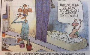 editorial cartoon-Boston Herald-racism