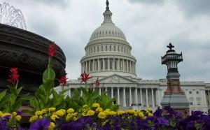 mandatory arbitration-Aribtration Fairness Act-Senator Al Franken-American Arbitration Association-Public Justice